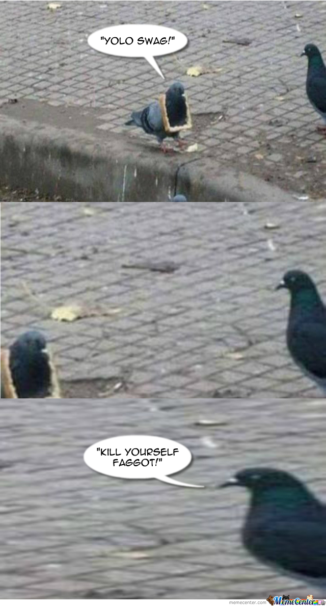 Pigeon Swag!