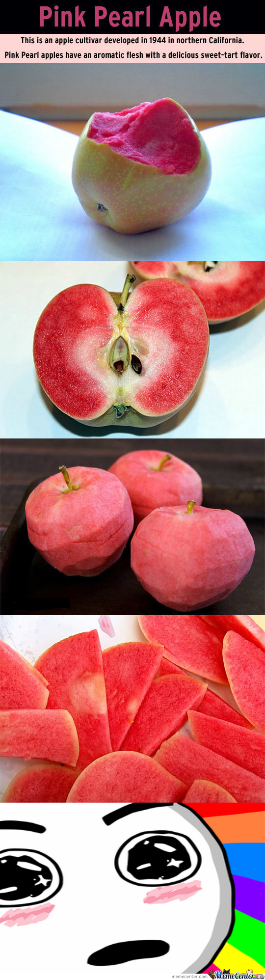 Pink Pearl Apples!