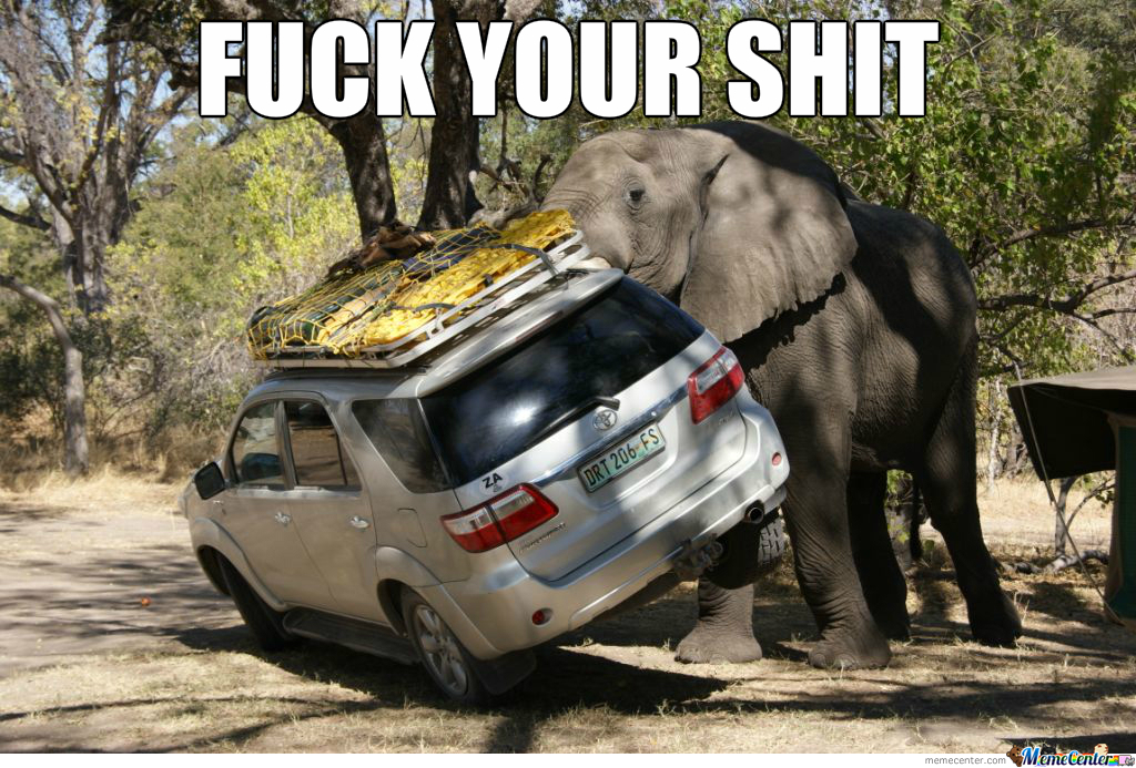 Pissed Elephant
