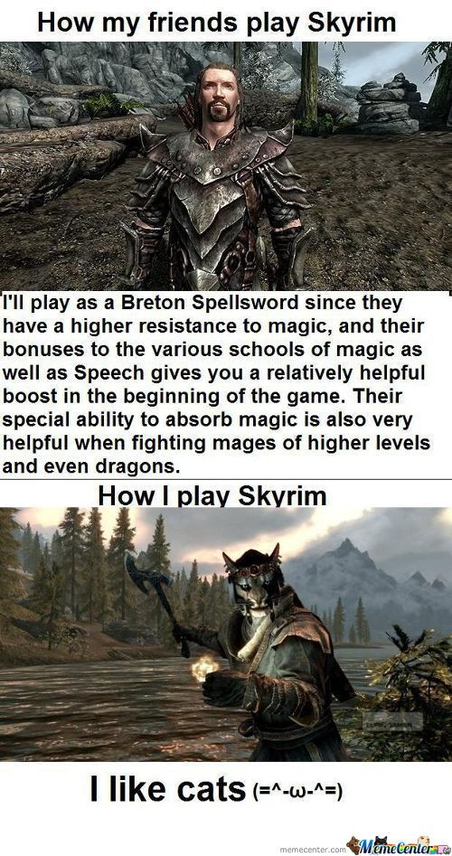 Play Skyrim Like A Boss