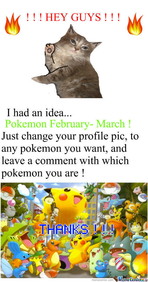 Pokemon February- March ! ! !