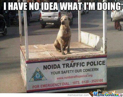 Police Dog Gets A Promotion