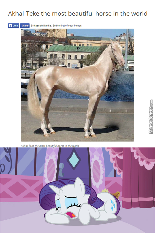 Poor Rarity...