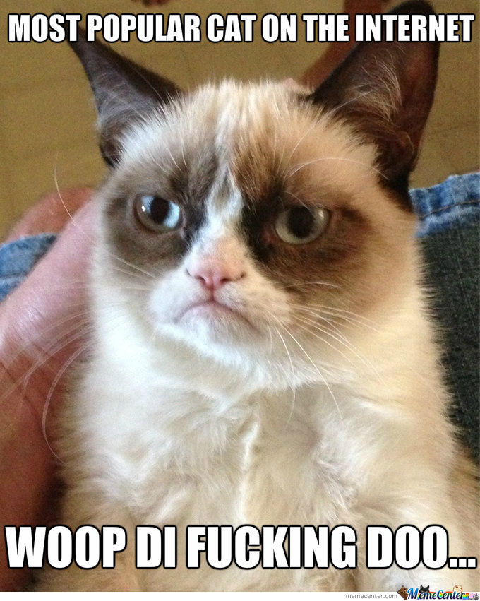 Popular Grumpy Cat