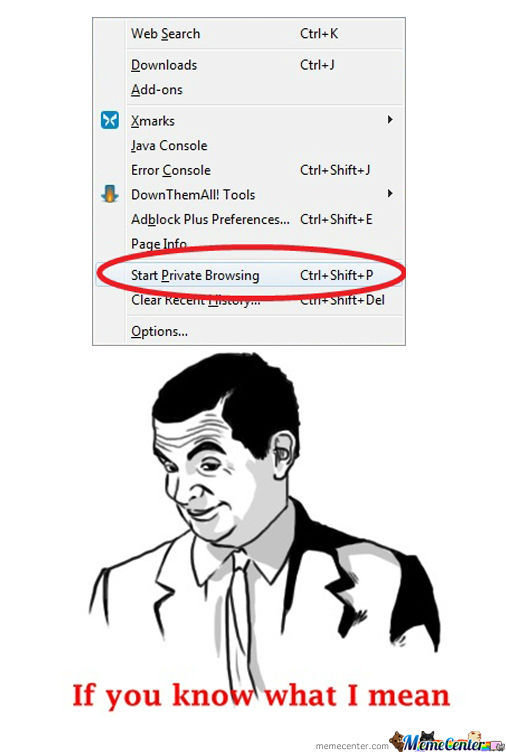 Private Browsing (If You Know What I Mean)