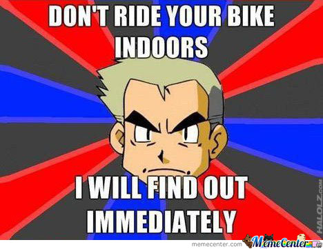 Professor Oak Says No