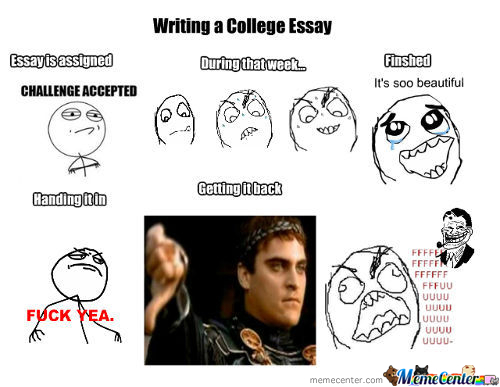 Professor, Y U No Like My Essays!!!