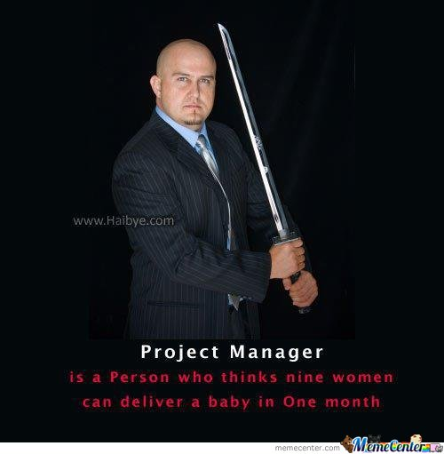 Project Mannger