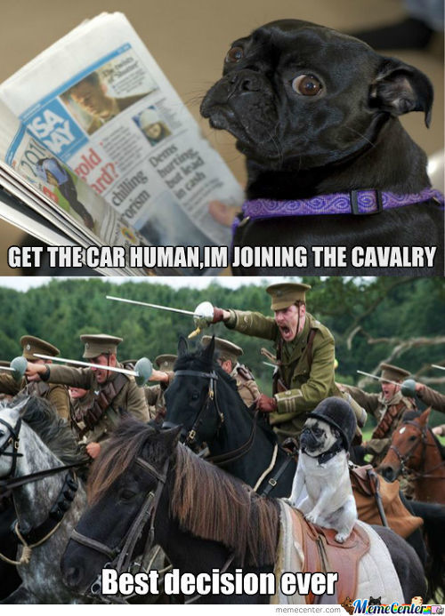 Pug Joins The Cavalry