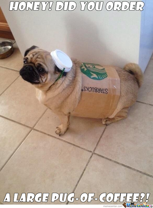 Pug-Of-Coffee