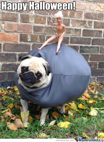 Puggy Ball