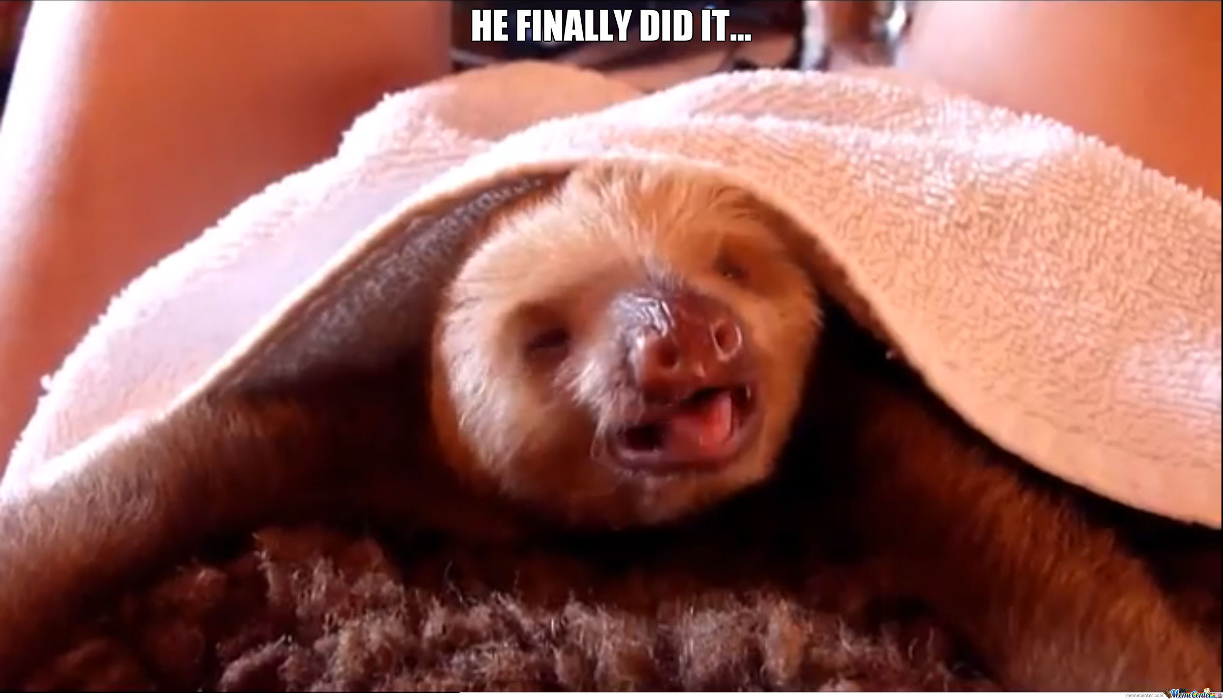Rape Sloth Finally Does It