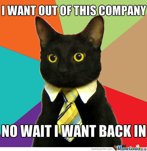 Real Business Cat
