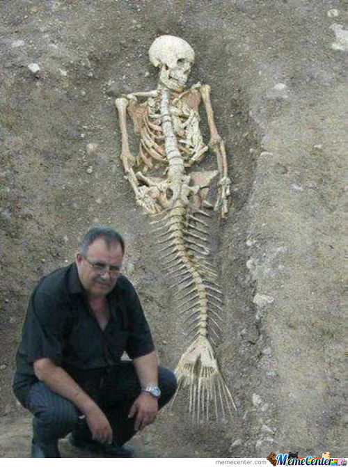Real Dead Mermaid