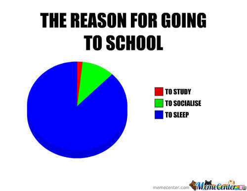 Reason For School