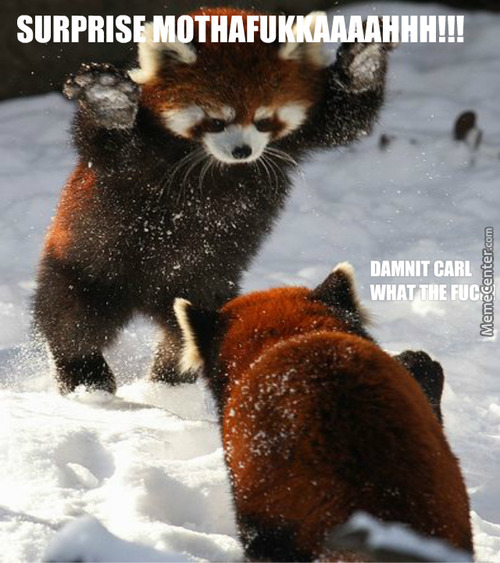 Red Panda Specialty Snow Sneak Attack