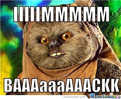 Return Of Ewok