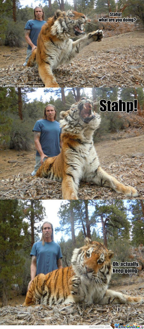 Ride The Tiger.