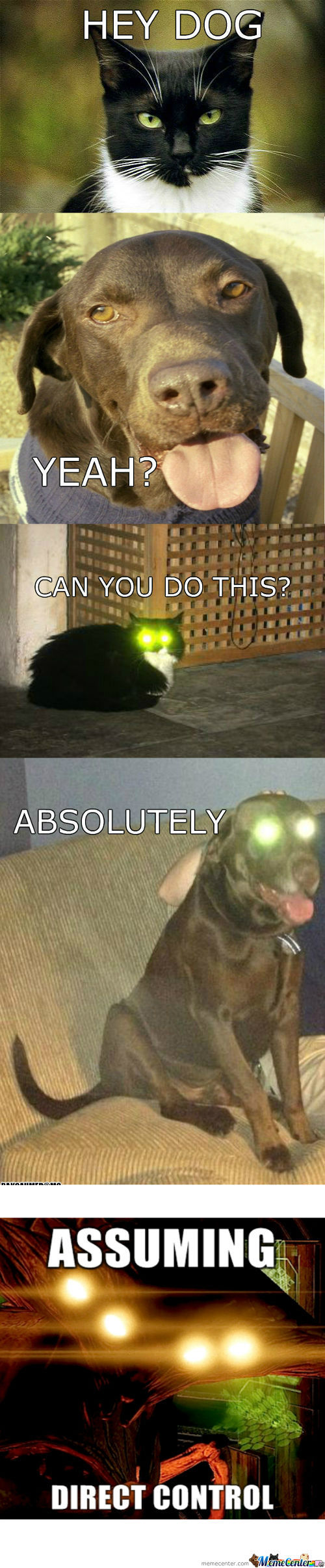 [RMX] Cat & Dog Laser Eyes