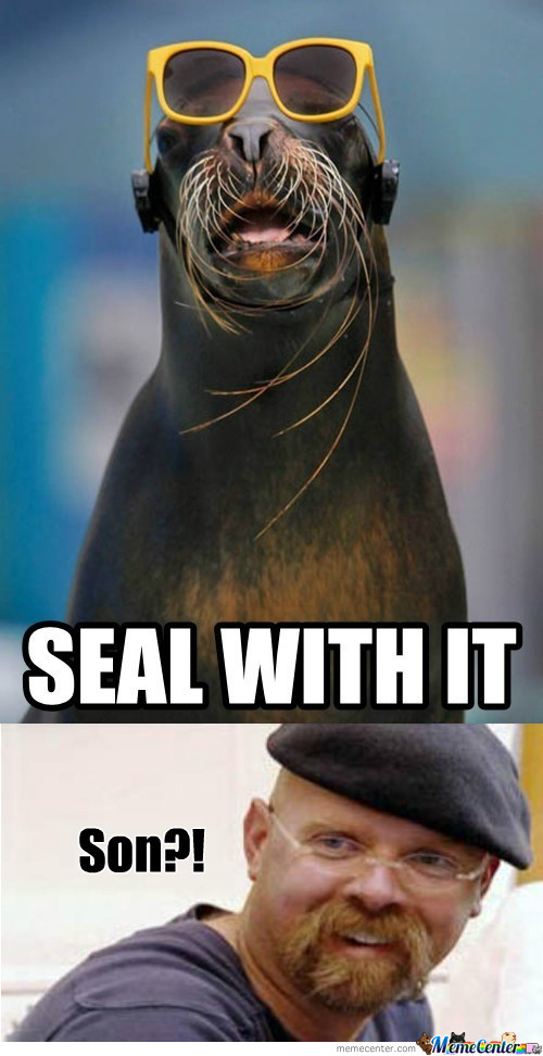 [RMX] Deal With It - Seal Version