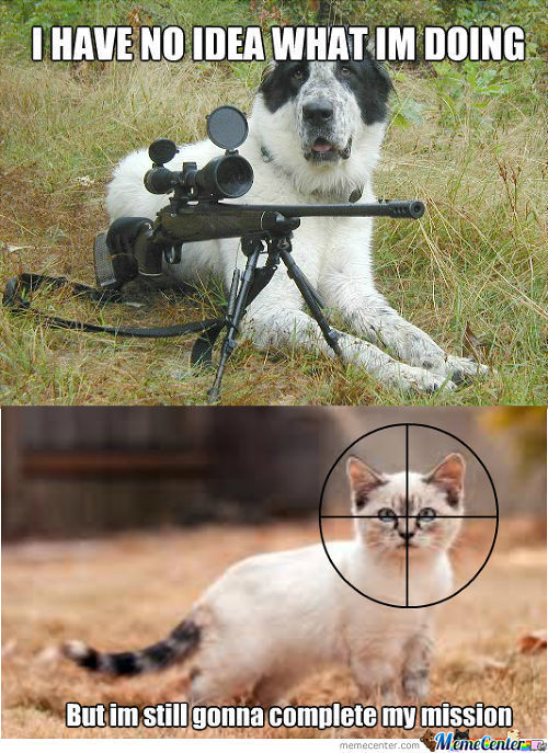 Baby with a gun memes best collection of funny baby with - Pictures of funny animals with guns ...