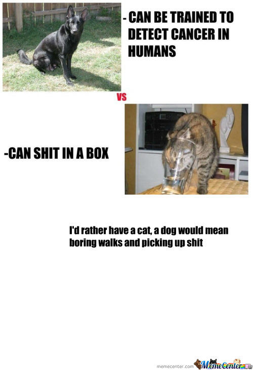 [RMX] Dogs Vs Cats