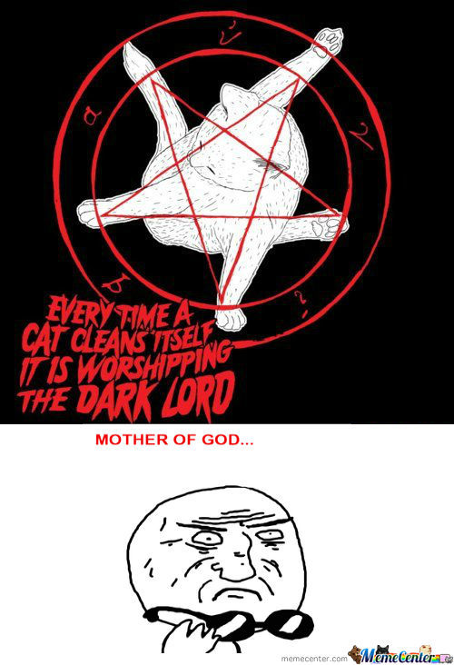 [RMX] Every Time A Cat Cleans Itself, It Is Worshipping The Dark Lord