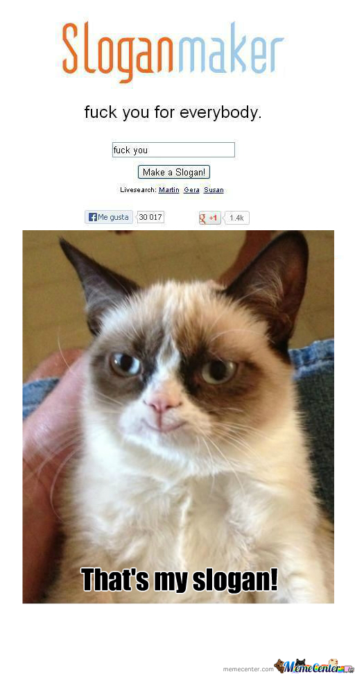 fotos   rmx grumpy cat