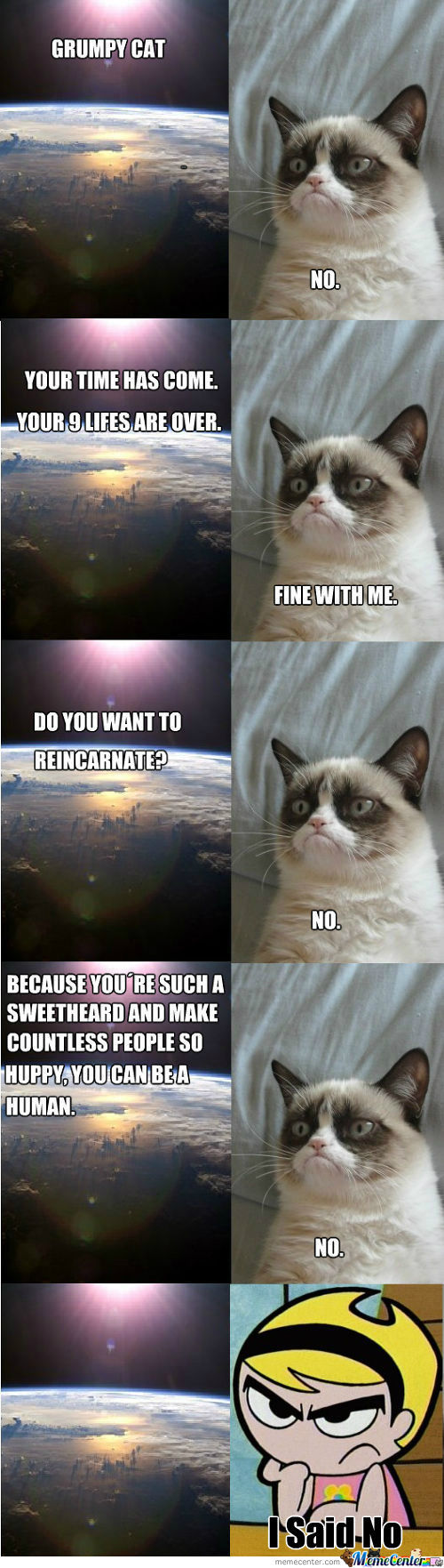 [RMX] Grumpy Cat And The Universe