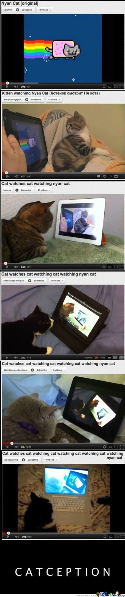 [RMX] Inception? Catception