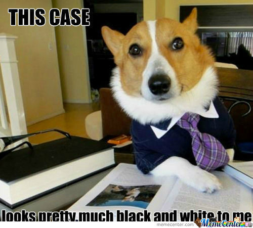 [RMX] Lawyer Dog