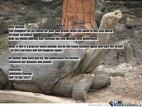 [RMX] Lonesome George Is Not Forever Alone Again.
