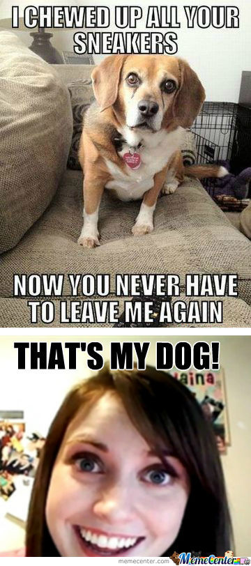 [RMX] Overly Attached Dog