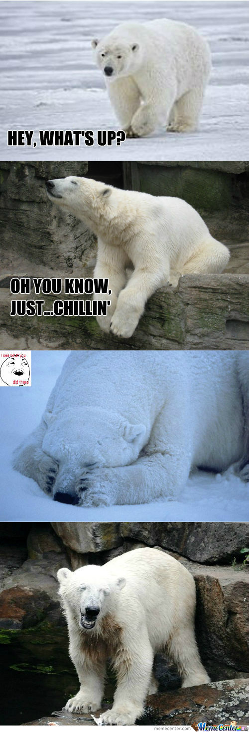 [RMX] Polar Bear Puns (He Can Hardly Bear It!)