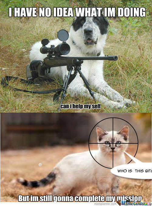Evil dog with gun