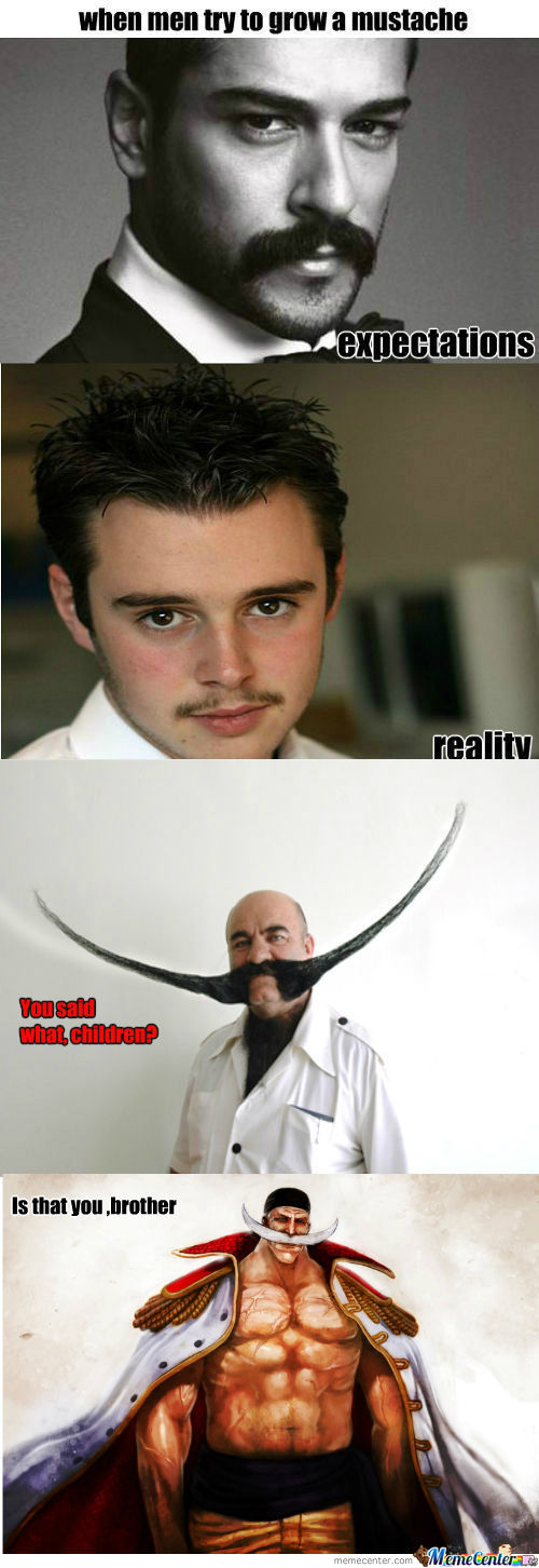 [RMX] [RMX] Mustache Expectations Vs Reality