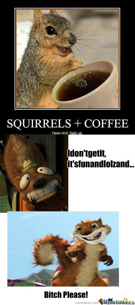 [RMX] [RMX] Squirrels+Coffee