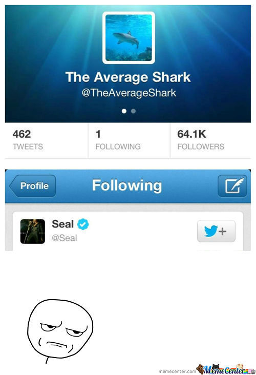[RMX] The Only Person The Average Shark Follows
