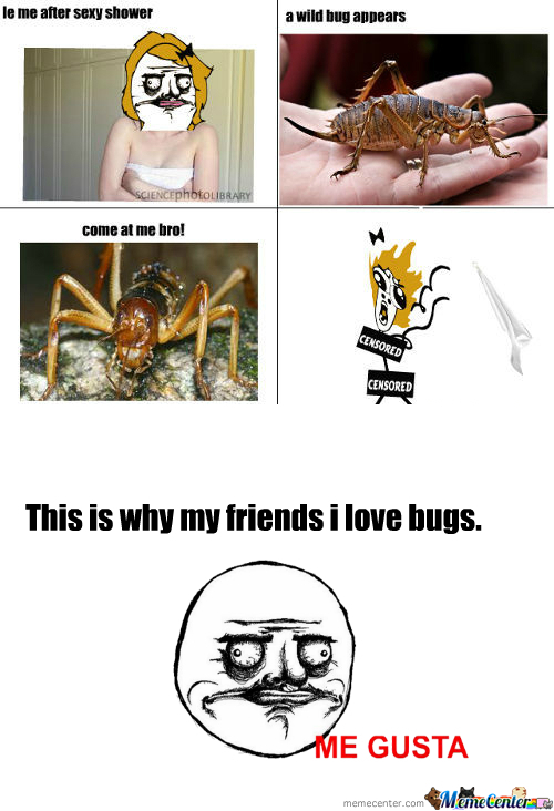 [RMX] This My Friends...is Why I Hate Bugs