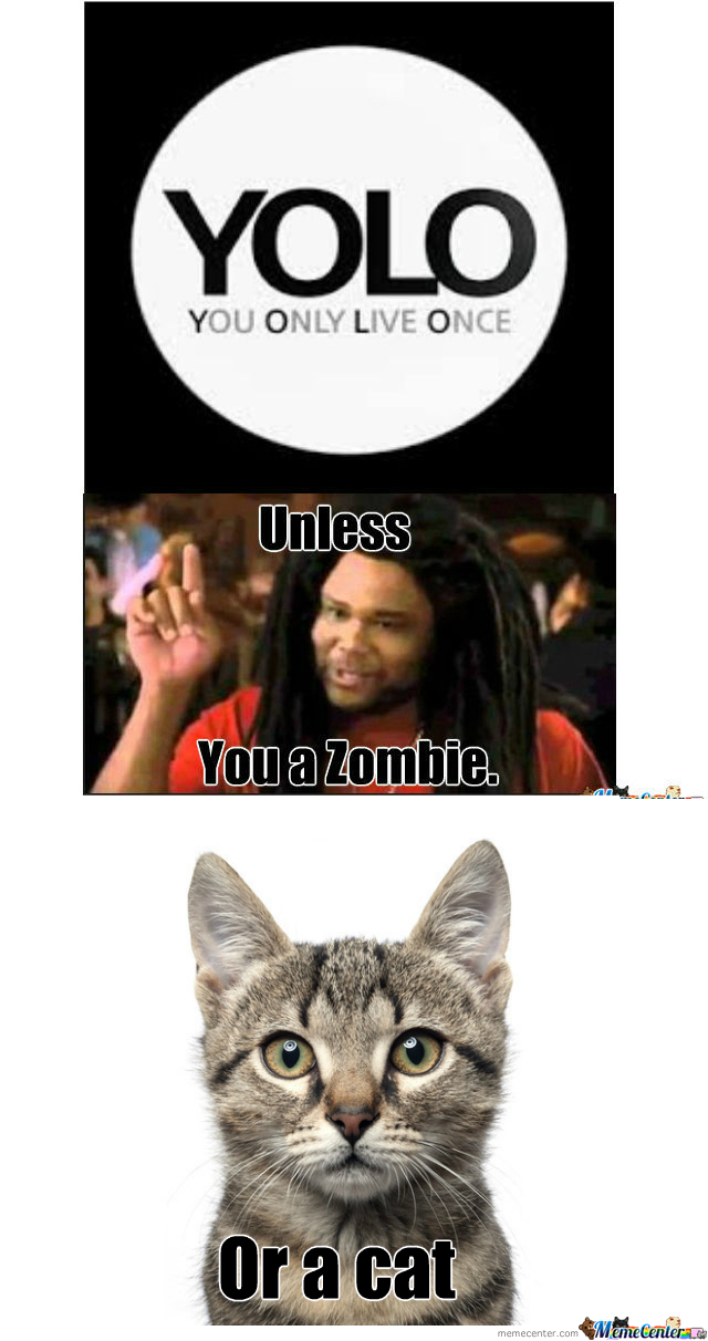 [RMX] Unless You A Zombie