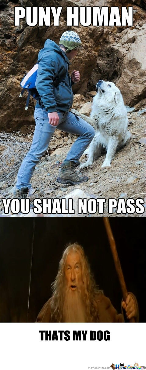 [RMX] You Shall Not Pass