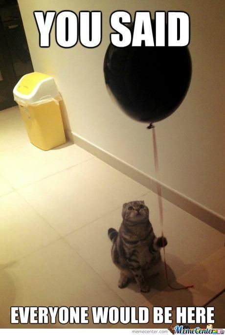Sad Birthday Cat
