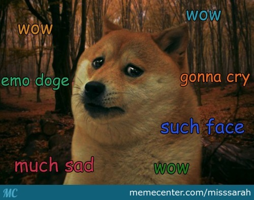 Sad Doge Is Sad