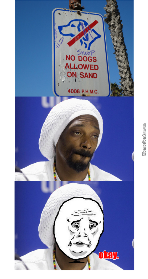 Sad Snoop