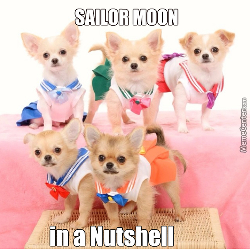 Sailor Doggy