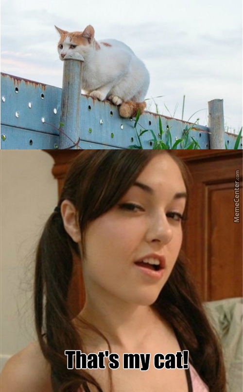 Sasha Gray Approves
