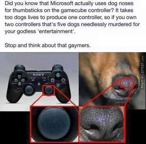 Save The Dogs!