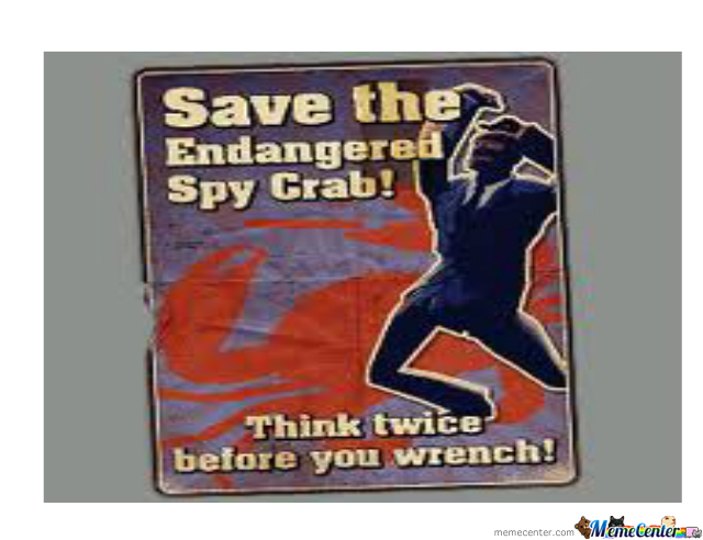 Save The Spy-Crab