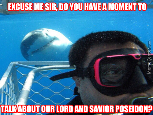 Shark Photobomb :3