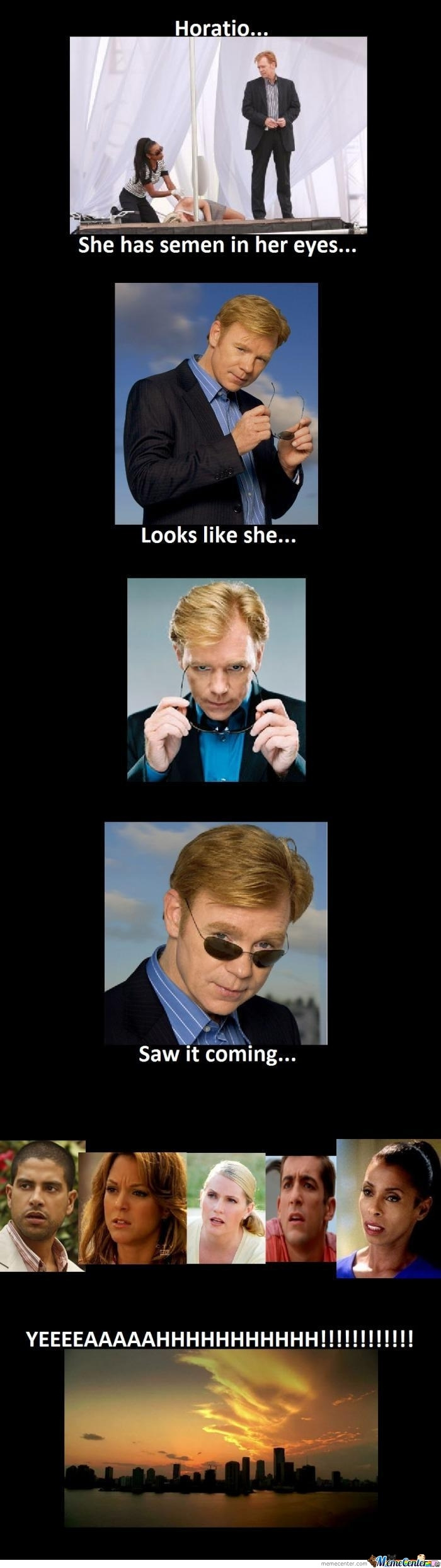 She Saw It Co... Oh! I See What You Did There, Horatio..